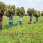 Bangladesh tourism