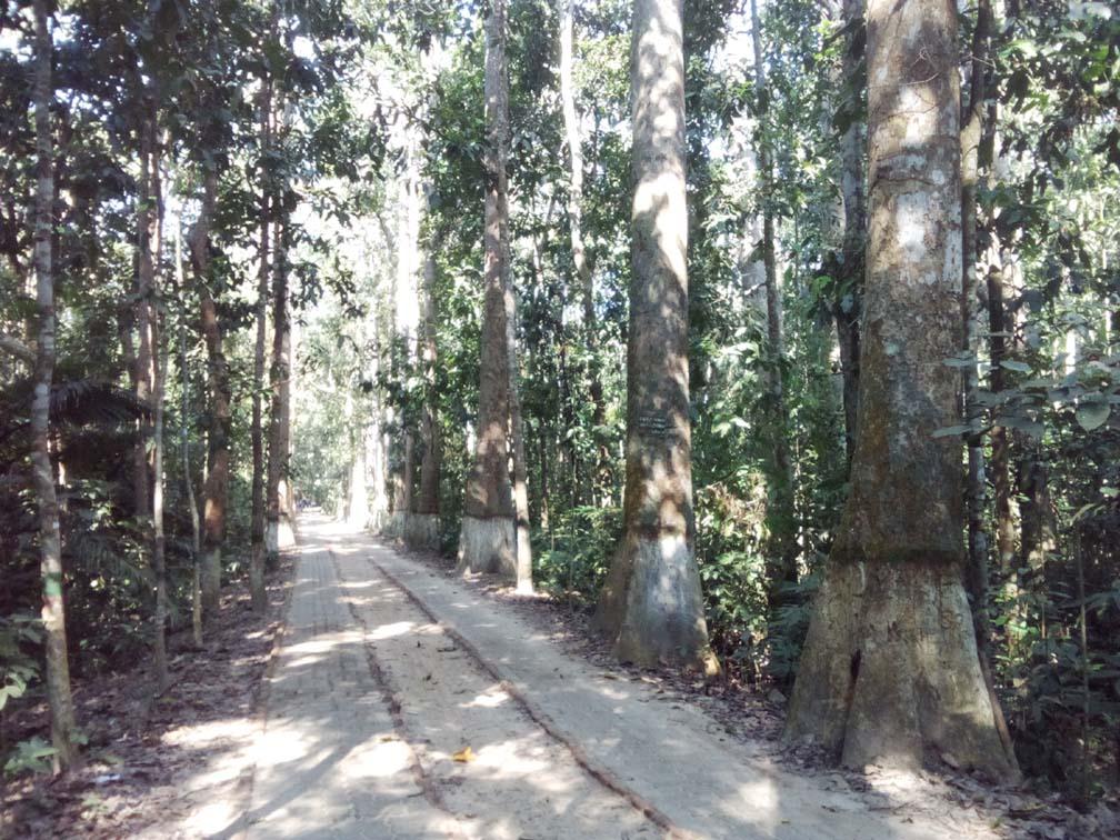 Sylhet Srimangal tour