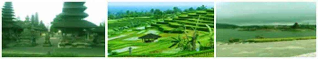 Package trip in Bali